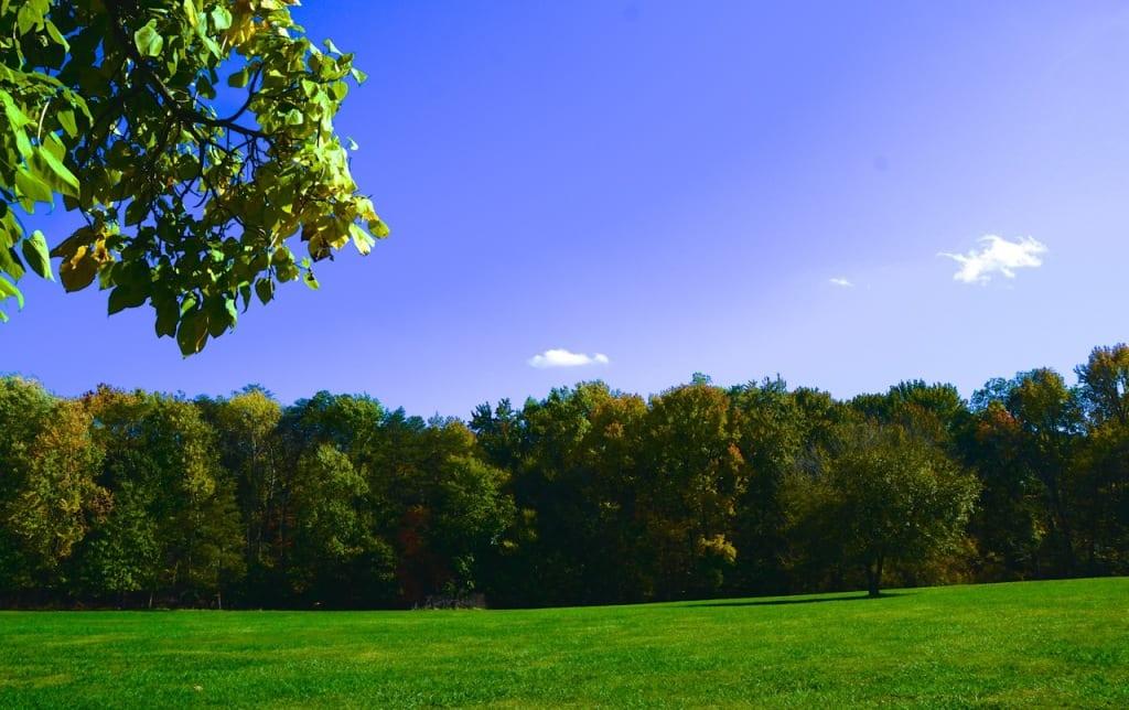 Maryland_Autumn1c