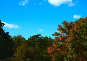 Maryland_Autumn1e