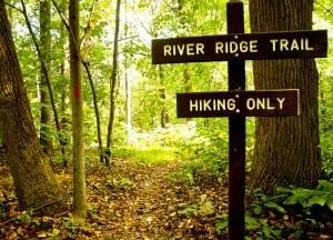 Patapsco_riverridge-trail1