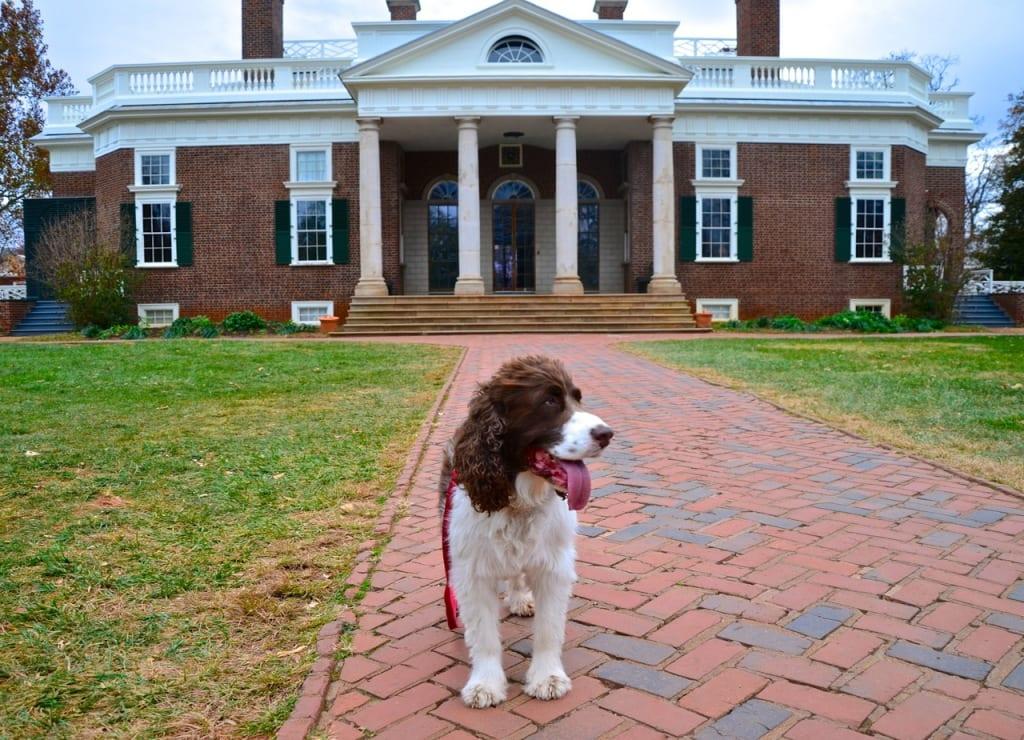 Monticello_doghouse1a