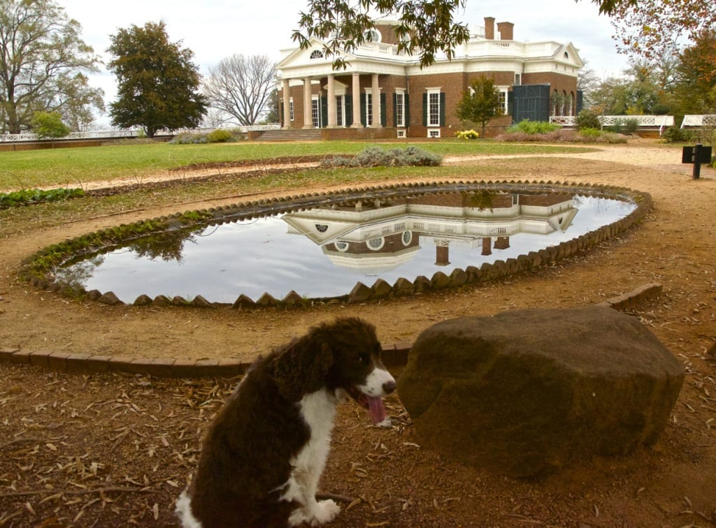 Monticello_fishpond1a