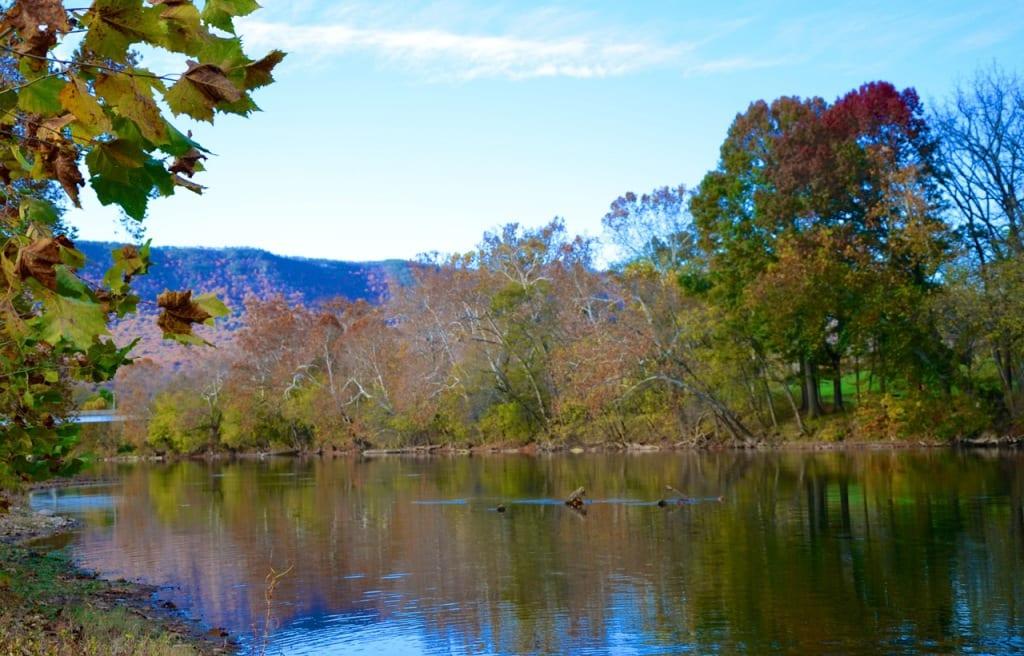Shenandoah_river-fall2014b