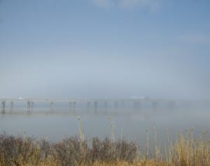 MobileBay_fog1i