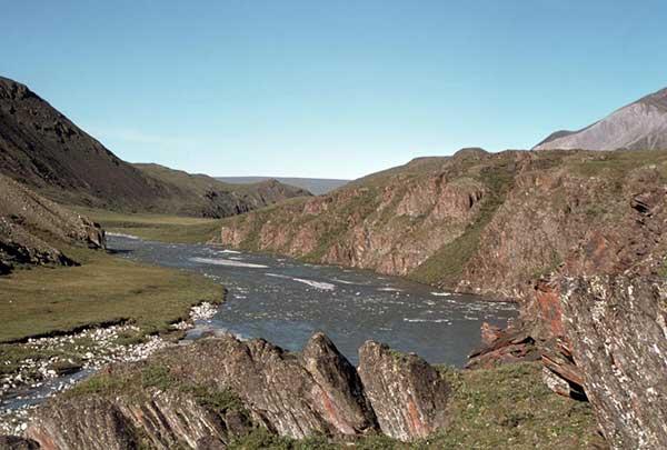 arctic-national-wildlife-refuge-summer