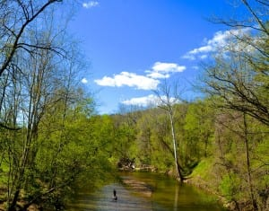 Avalon_river1