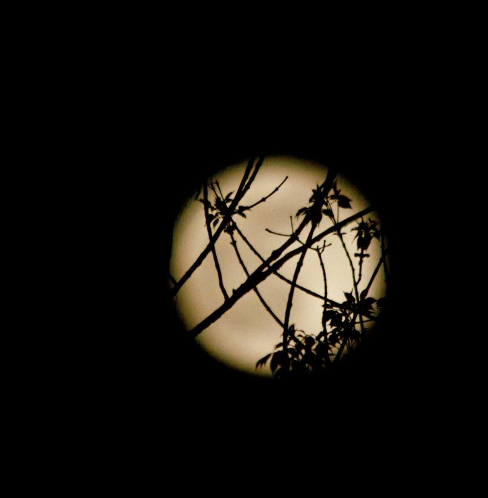 Full_Moon-may2015b