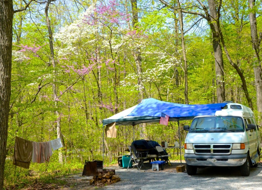 Patapsco_campsite2a