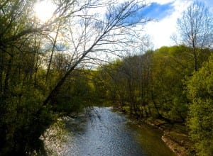A view of the Patapsco River from the bridge in the Woodstock Area of Patapsco State Park: Glynn Wilson