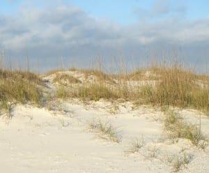 GulfStatePark_beach1d