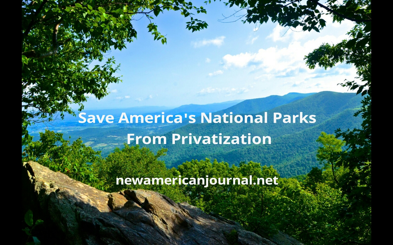 NPS-save1