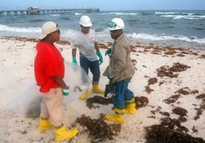 beach_workers1b
