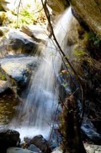cheahafalls_hike11-3-13l