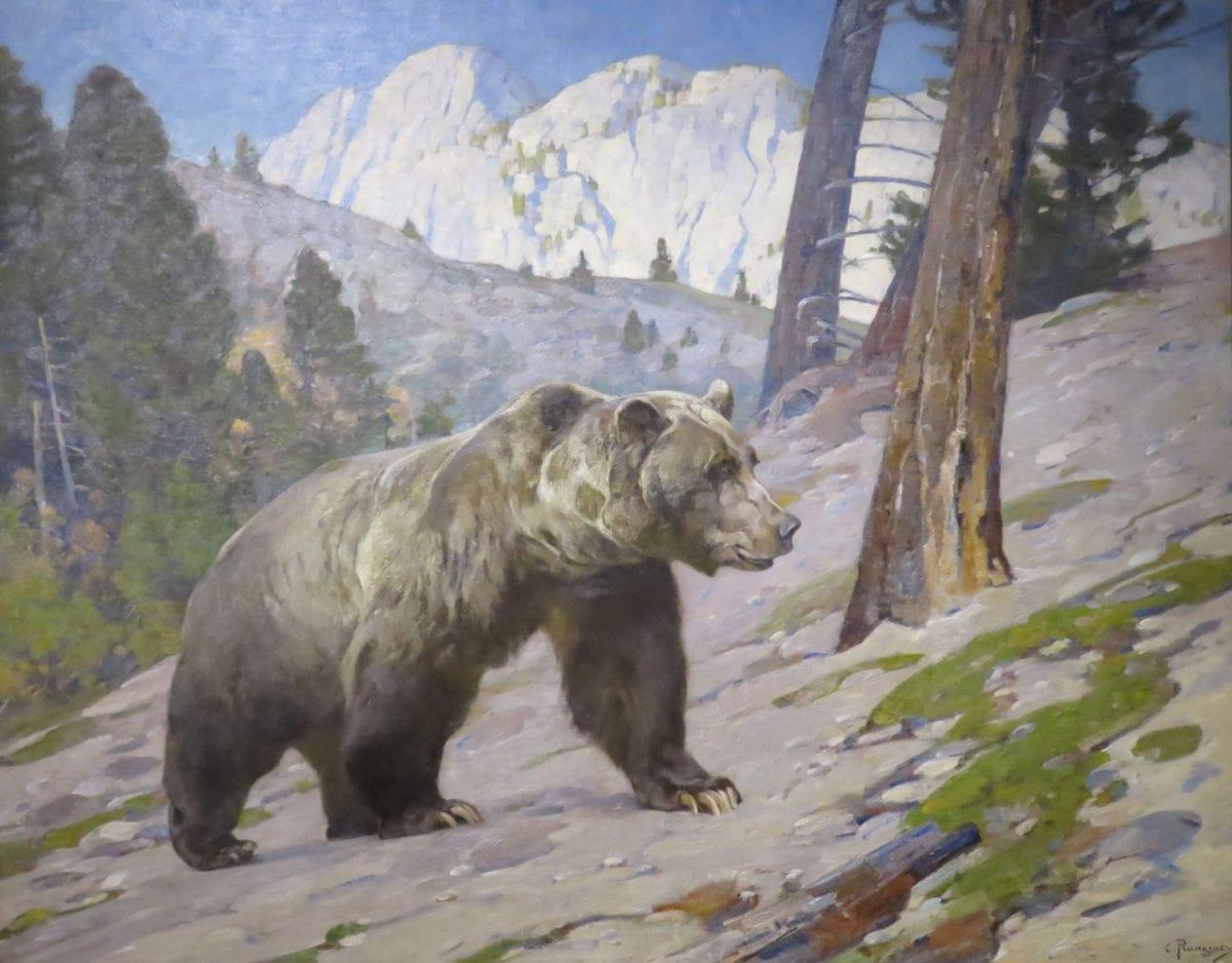 Grizzly_Bear7gb