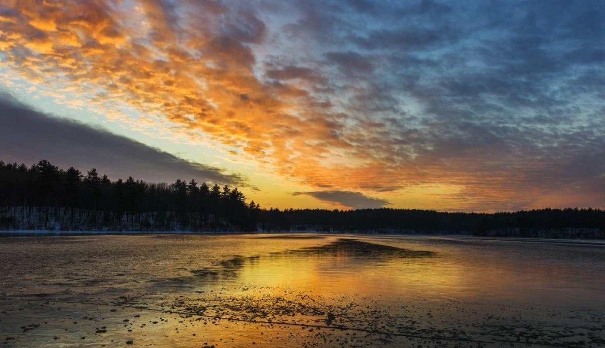Thoreau's Walden Pond